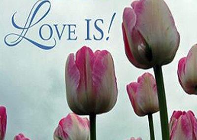 "<a href=""http://www.MediumMairin.com/Readings"" target=""_blank"">Read UP: Love IS!™</a>"